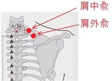肩中兪の位置